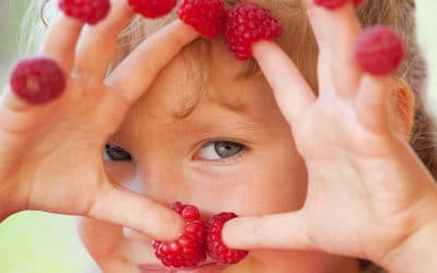 Establishing healthy eating habits for your child